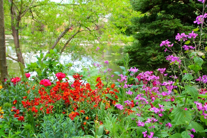 Spring flowers blooming at Giverny. France. 05.09.16. 27