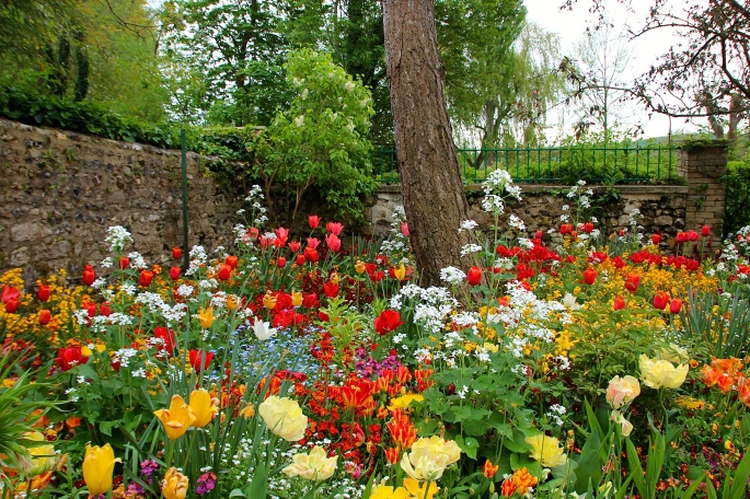 Spring flowers blooming at Giverny. France. 05.09.16