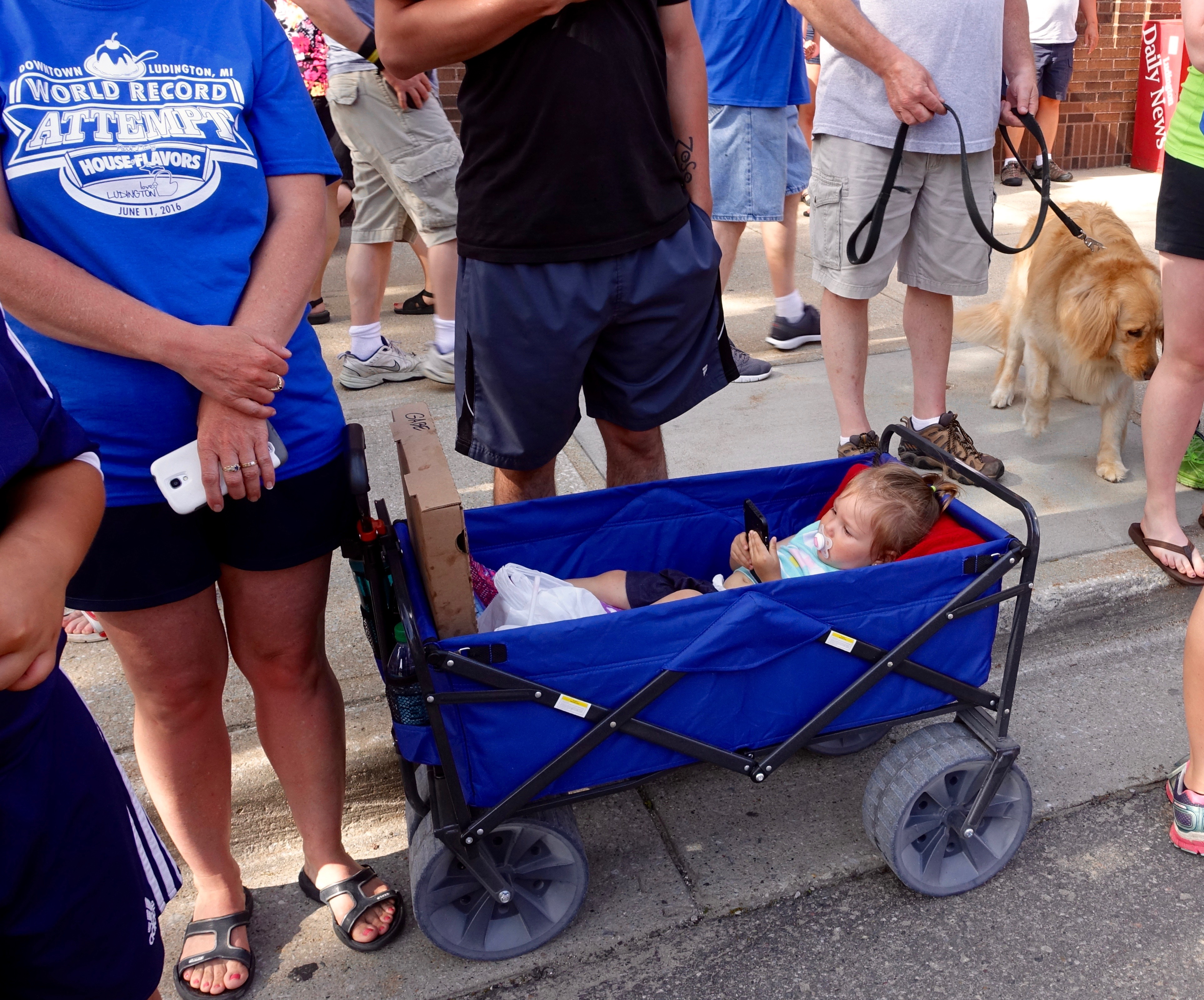 Baby playing with cell phone at Ludington's World's Largest Sundae Attempt