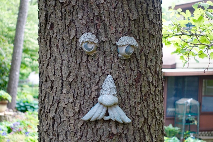Face on a tree