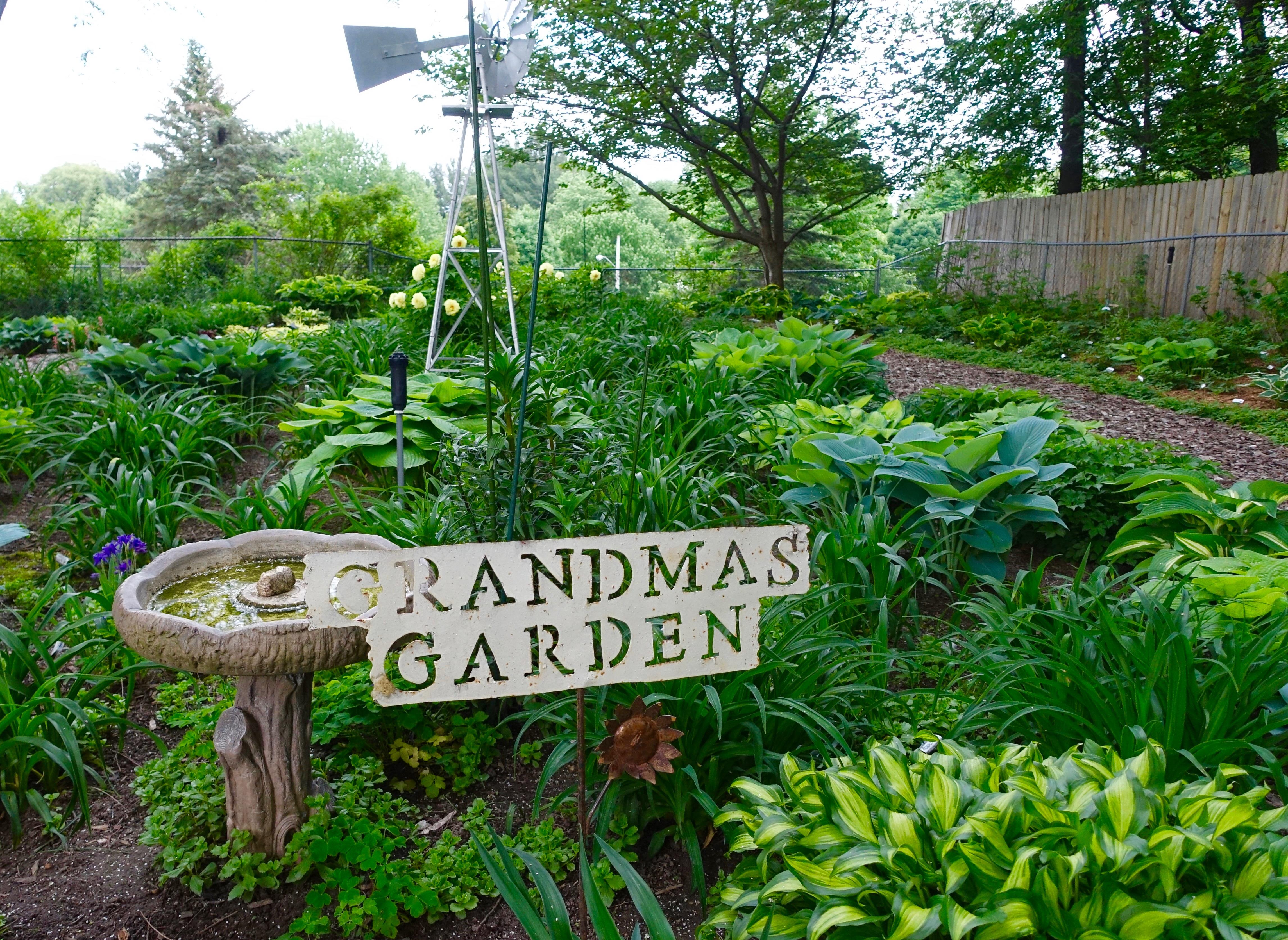 Grandma's Garden of Hostas