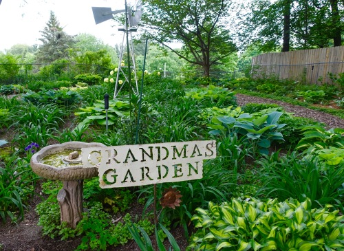 Grandma's Garden of Hostas