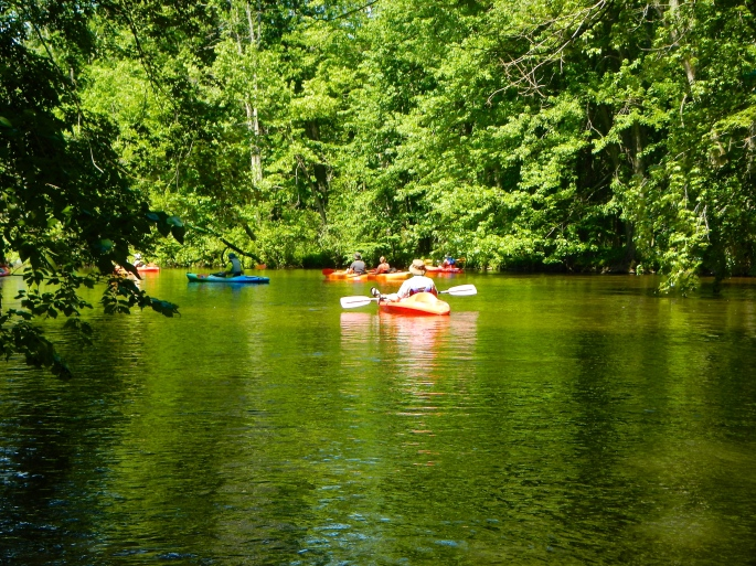 Group of kayakers on the Rogue River MI