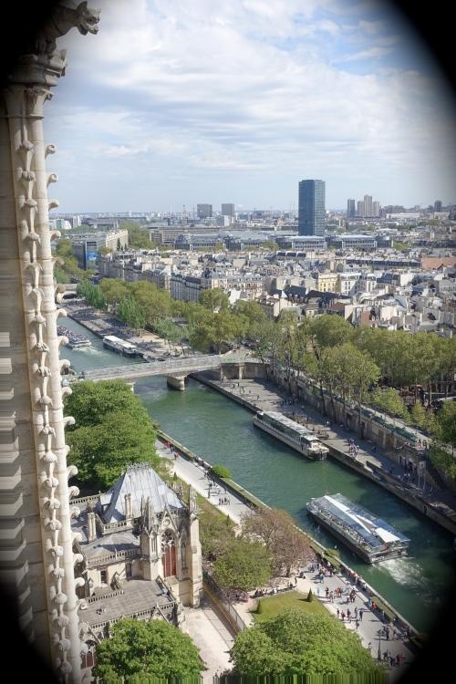 Notre Dame Gargoyle overlooking The Seine River