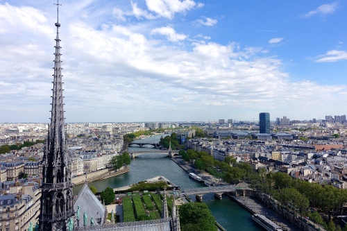 Paris as seen from the Notre Dame Cathedral Bell Tower