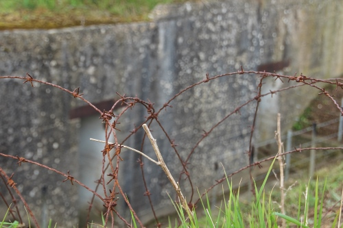 Barbed wire and bunkers on Normandy Beach