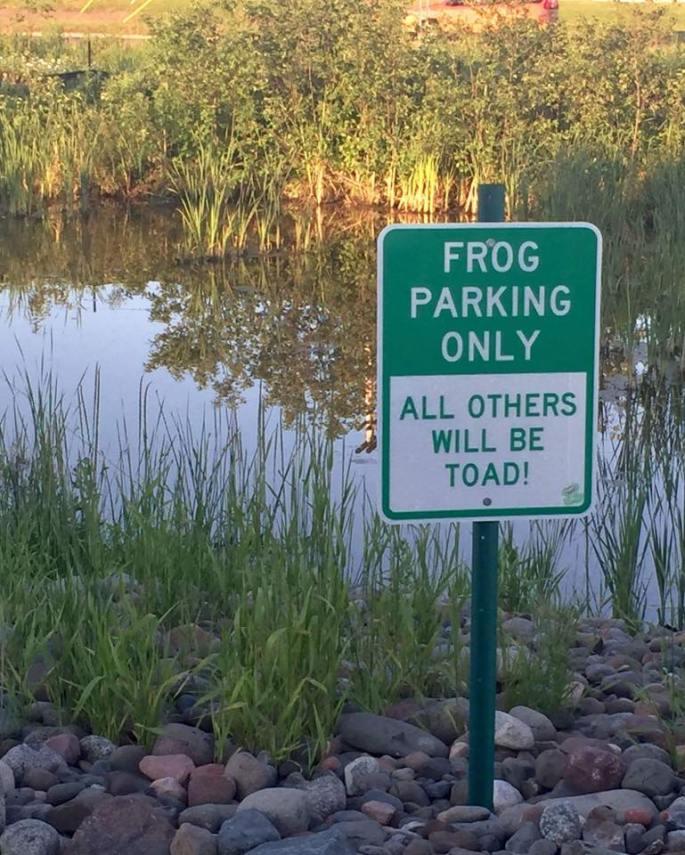 Frog Parking.