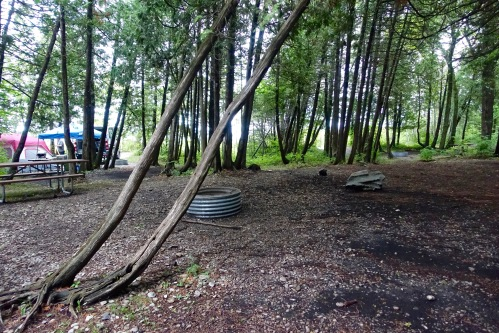 Rustic campground at Leelanau State Park