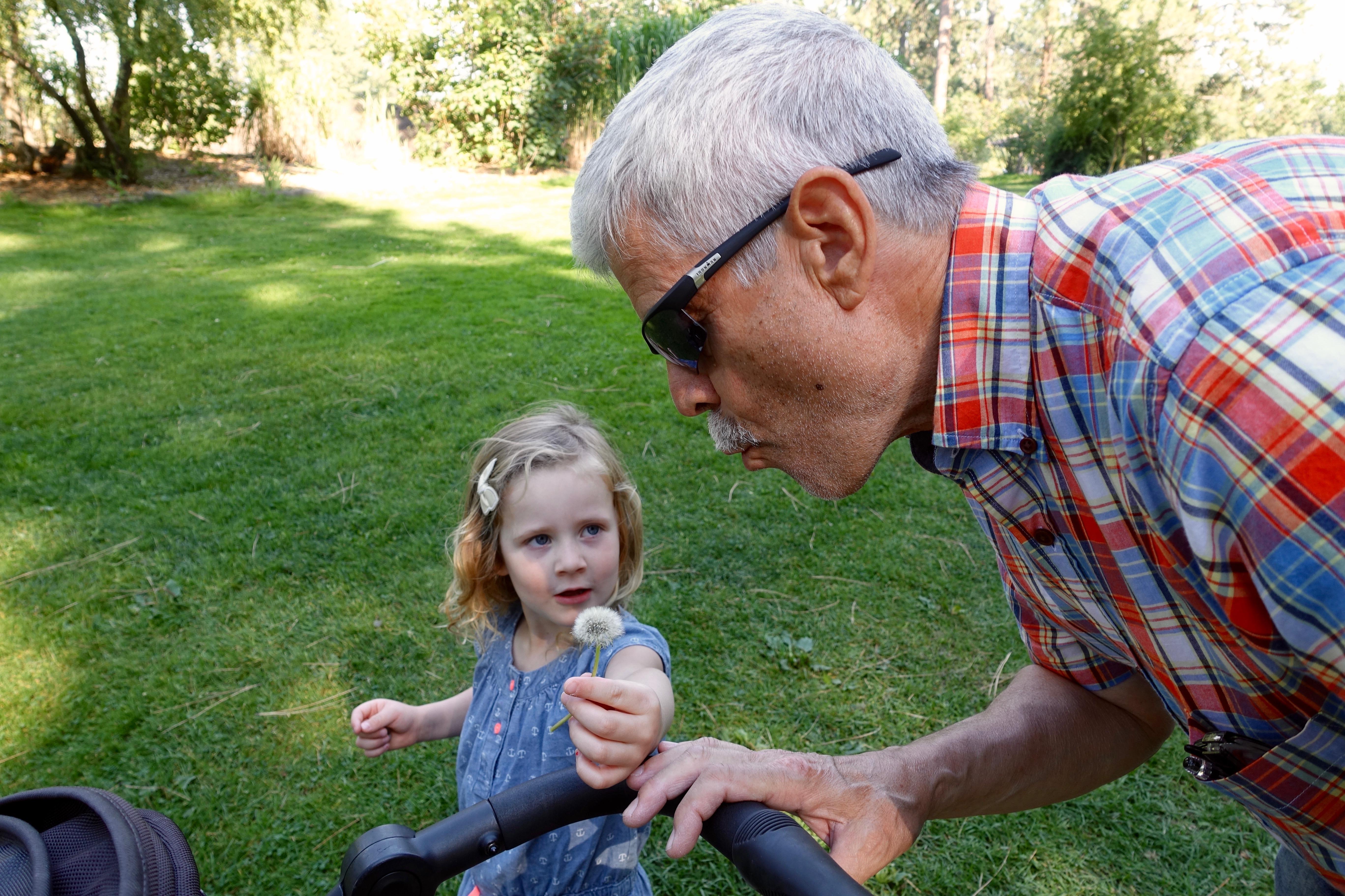 Grandpa blowing on dandelion