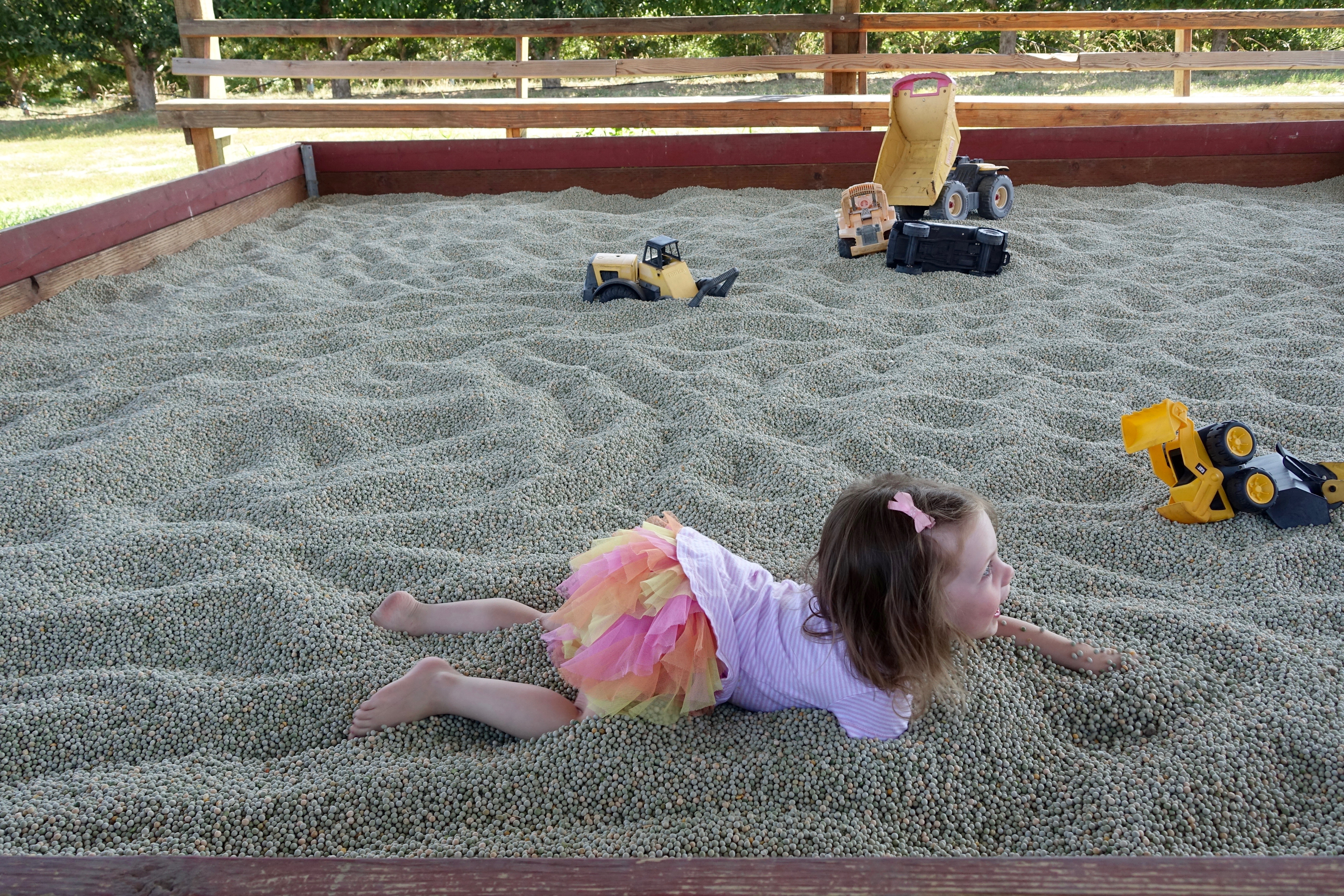 Little girl playing in dried peas