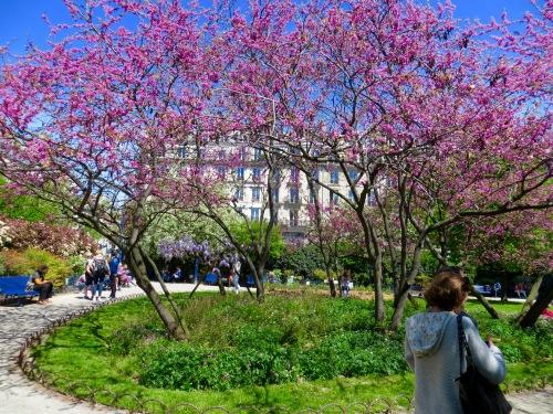 paris-spring