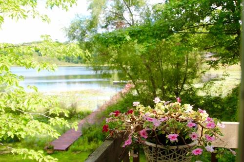 Small lake in Michigan