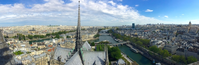 view-of-paris-from-the-top-of-the-notre-dame