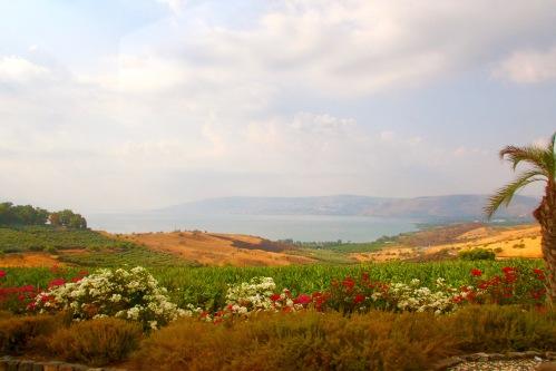 gardens-in-israel