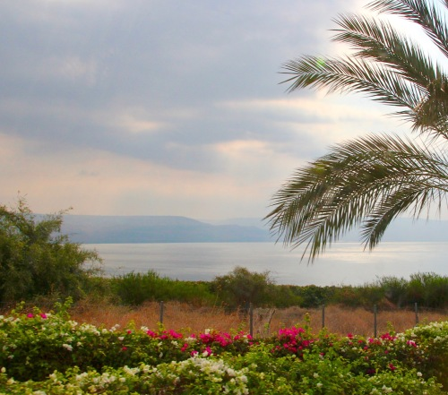 the-sea-of-galilee