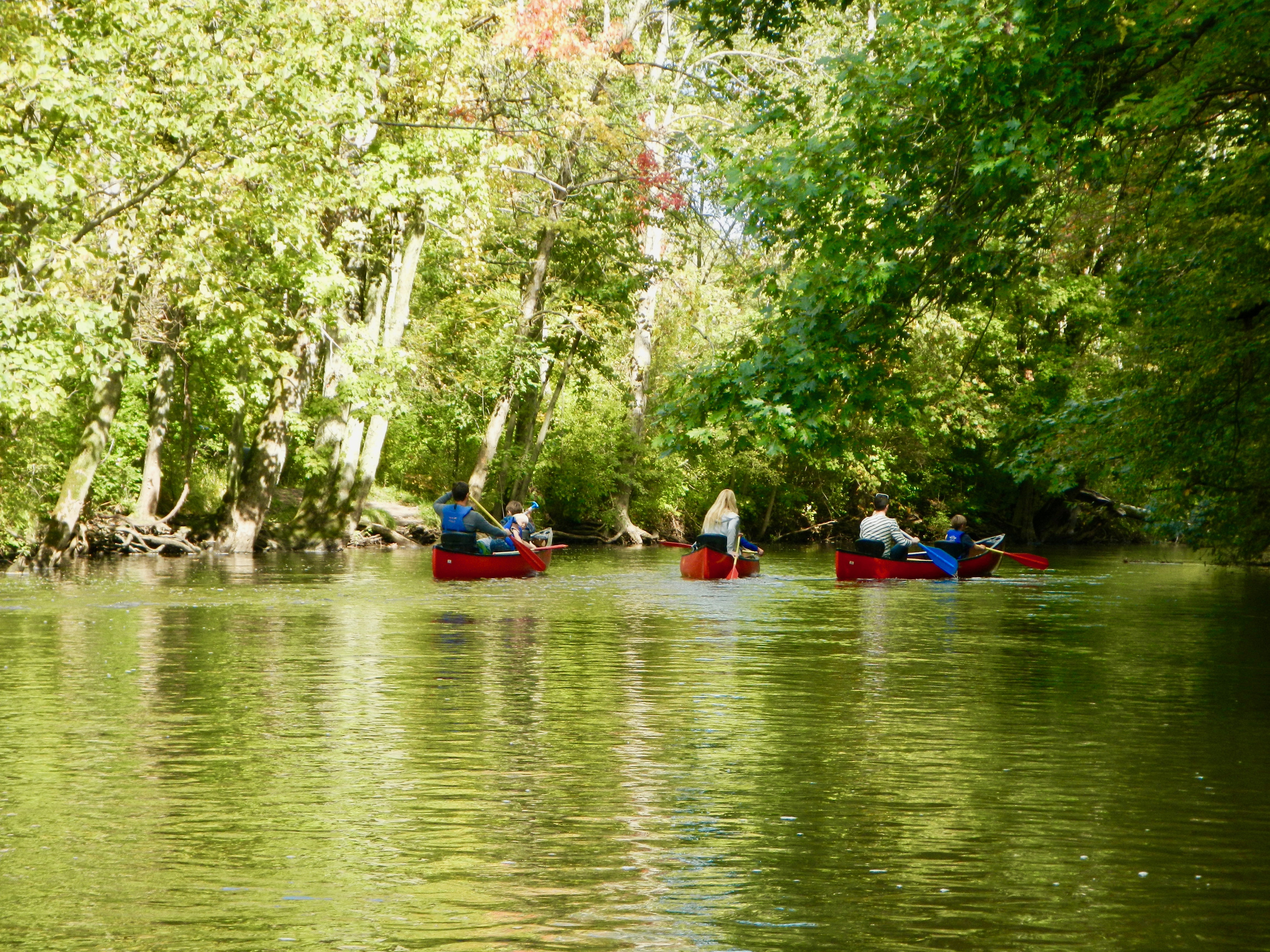 green-glow-of-indian-summer-on-the-rogue-river