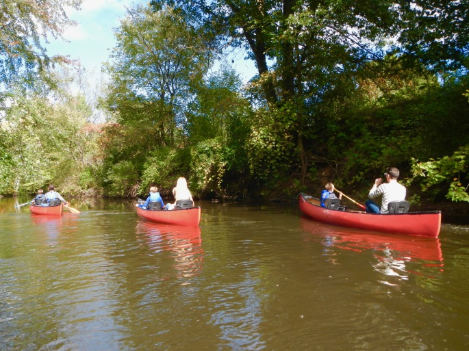 quiet-paddling-along-the-rogue-river