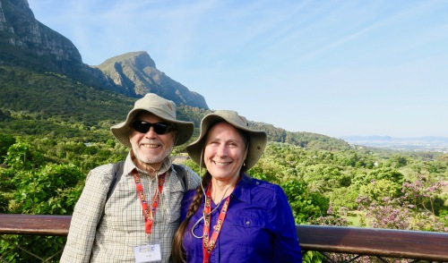 standing-on-top-of-the-centenary-walkway-in-kirstenbosch-botanical-garden