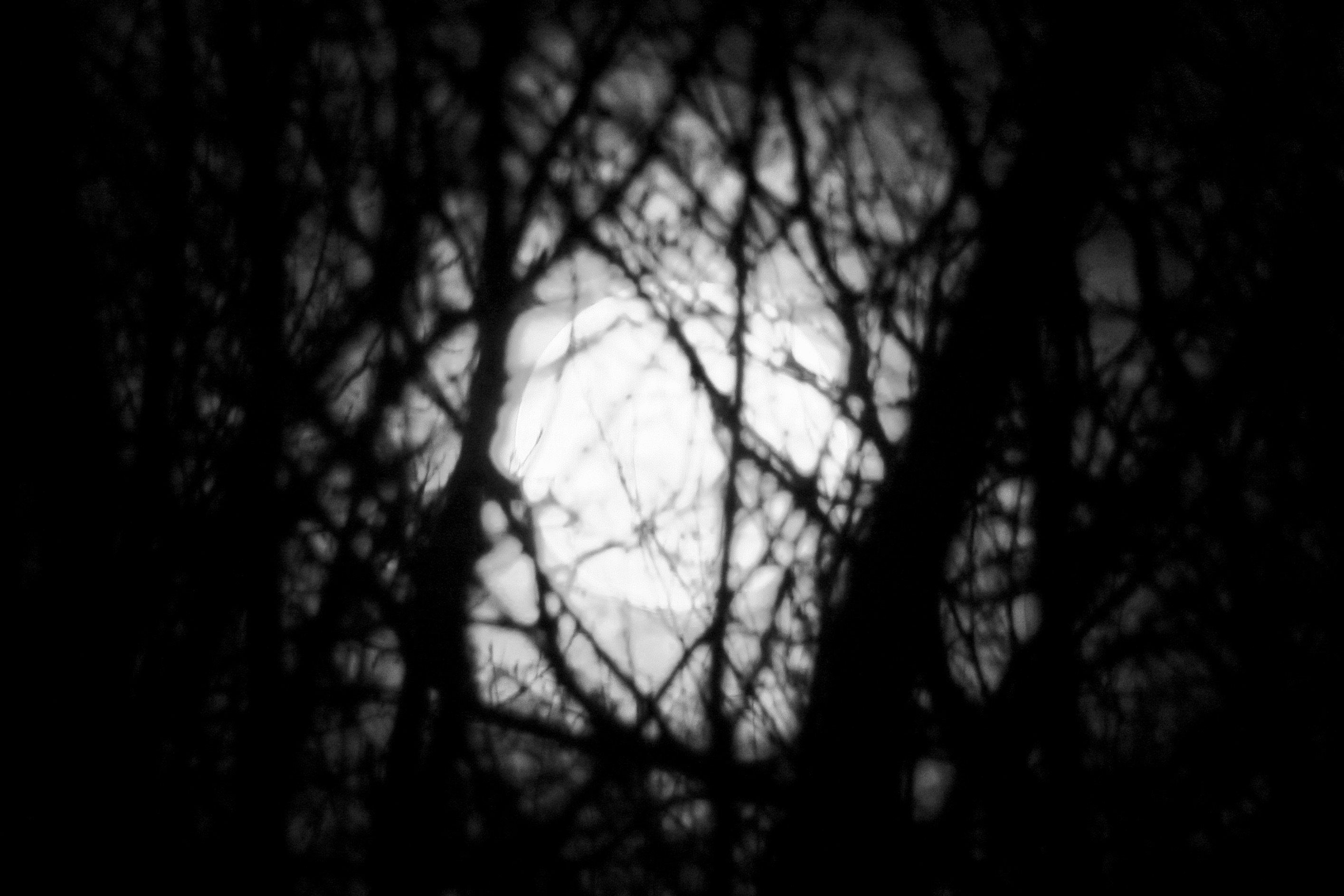 supermoon-black-and-white