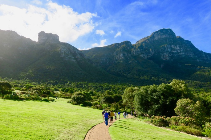 table-mountain-as-seen-from-kirstenbosch-botanical-garden