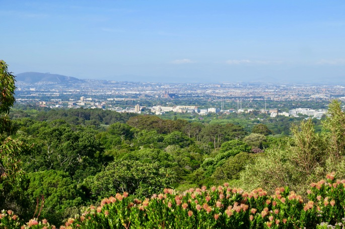view-of-cape-town-from-kirstenbosch-national-botanical-garden-sa