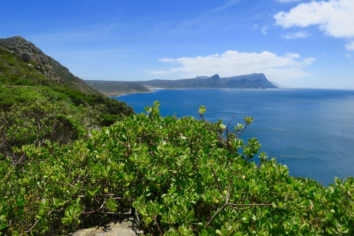 vistas-from-cape-point-south-africa