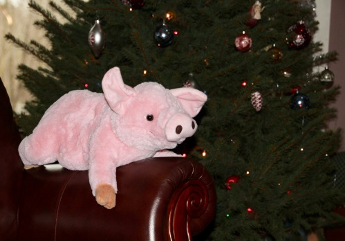 2014-stuffed-pig-under-christmas-tree