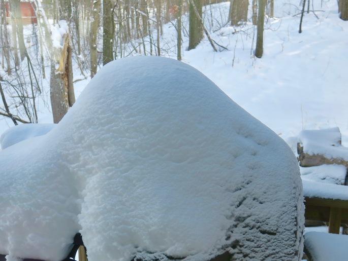 deep-snows