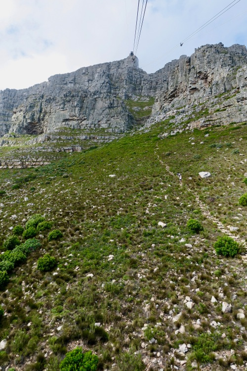 hiking-path-up-table-mountain