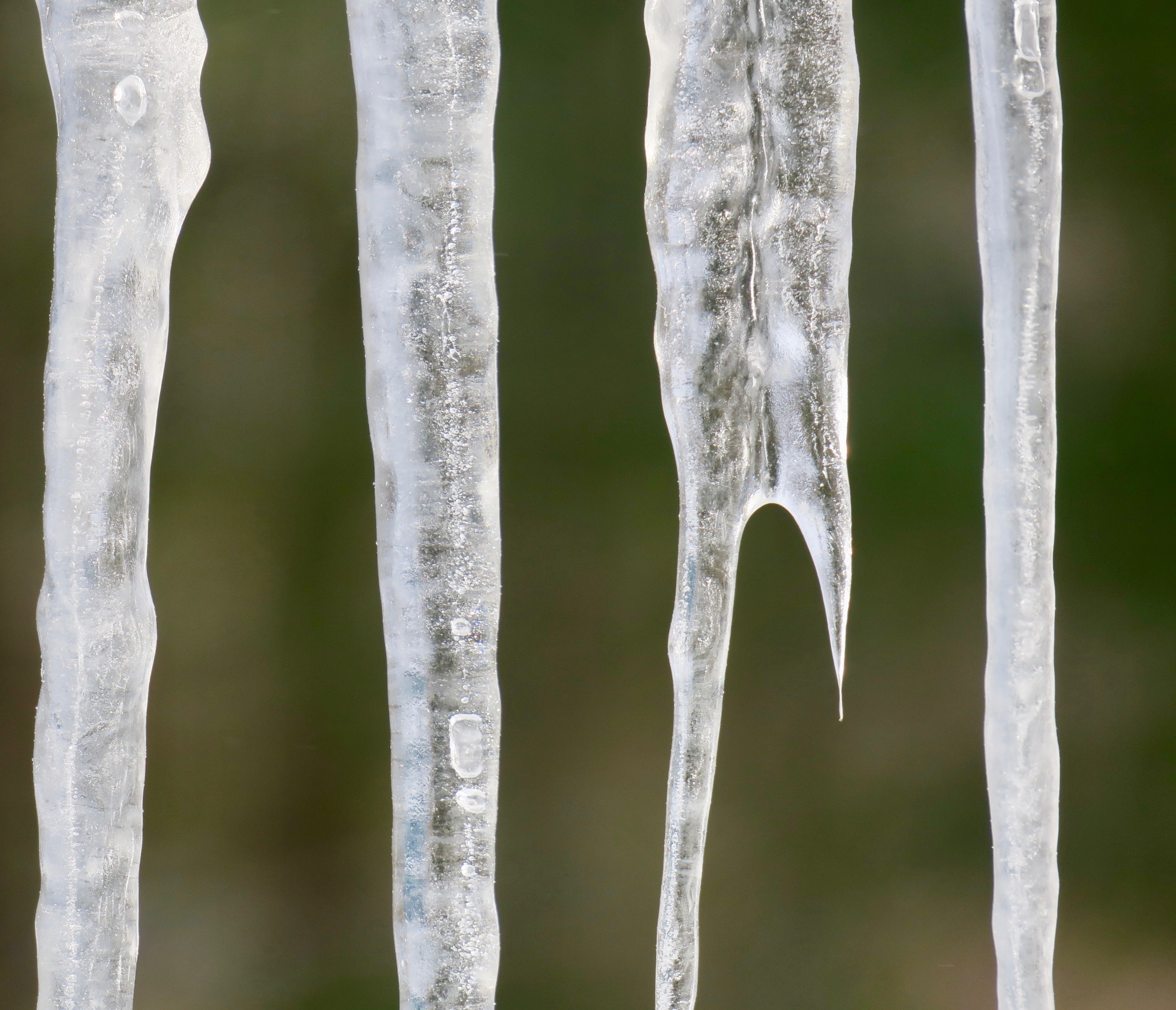 icicles-forming