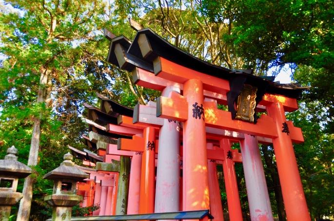 fushimi-inari-shrine-%e4%bc%8f%e8%a6%8b%e7%a8%b2%e8%8d%b7%e5%a4%a7%e7%a4%be-fushimi-inari-taisha-kyoto-japan-5