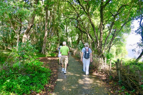 hiking-on-trail-in-zambezi-national-park-zimbabwe