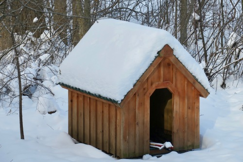 huge-snowy-doghouse