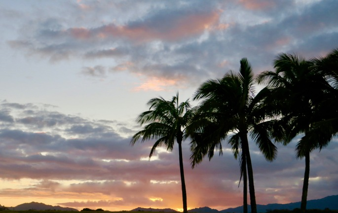 kauai-sunset-with-palm-trees