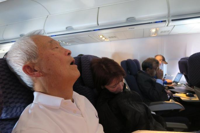 sleeping-seat-mates