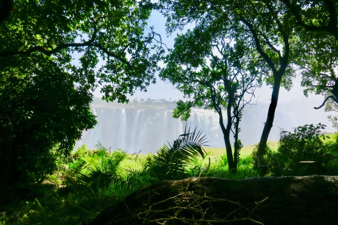 victoria-falls-seen-from-zambezi-national-park-zimbzbwe