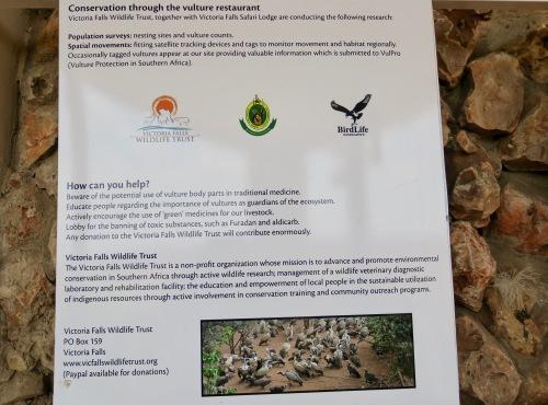 victoria-falls-wildlife-trust-vulture-restaurant-11-7-16