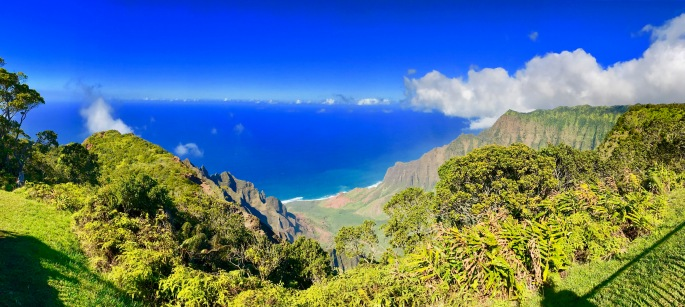 view-of-napali-coast-from-kaialau-lookout-kauai
