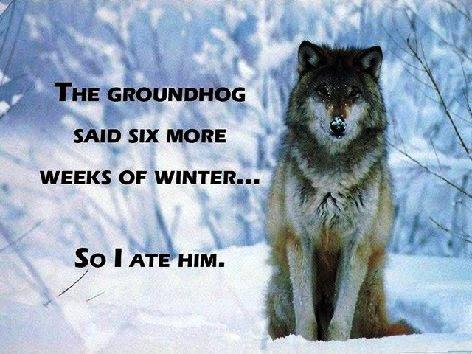 ground-hog-day