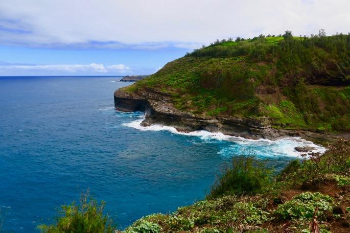 view-from-kilauea-point-kauai-hawaii