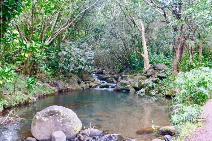 waterfall-near-hanalei