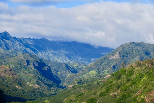 clouds-and-distant-trees-waimea-canyon-kauai
