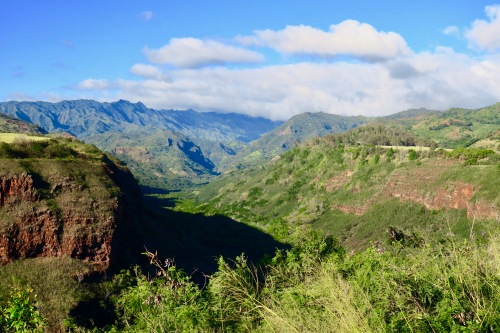 first-view-into-waimea-canyon-kauai