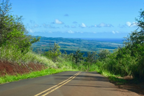 steep-road-up-waimea-canyon-kauai