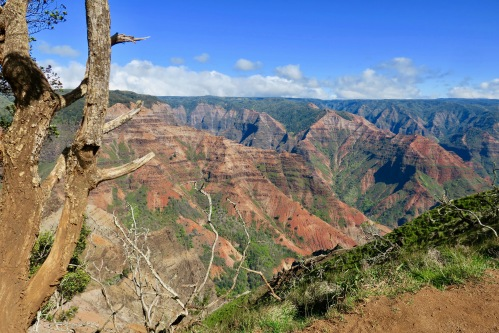 the-glory-of-waimea-canyon