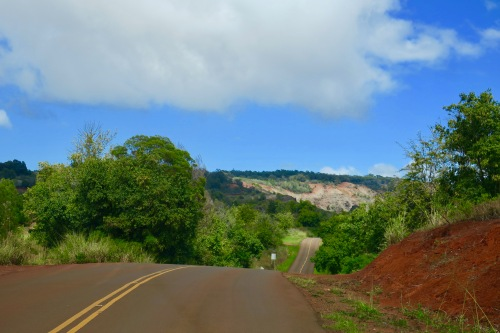 waimea-canyon-roller-coaster-roads